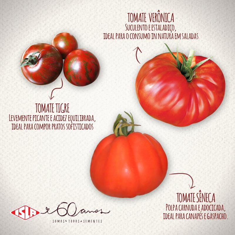 abc-tomate1