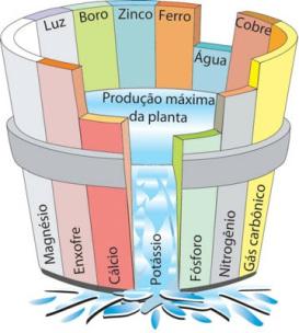 barril-de-liebig-para-explicar-la-ley-del-mc3adnimo2